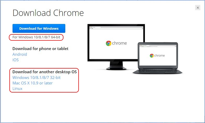 Google Chrome on Citrix deep-dive - Download Google Chrome